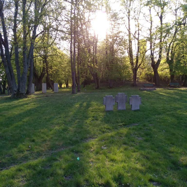 немецкое кладбище в пос. Русское